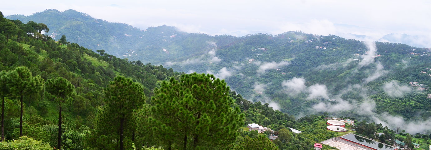 kasauli view